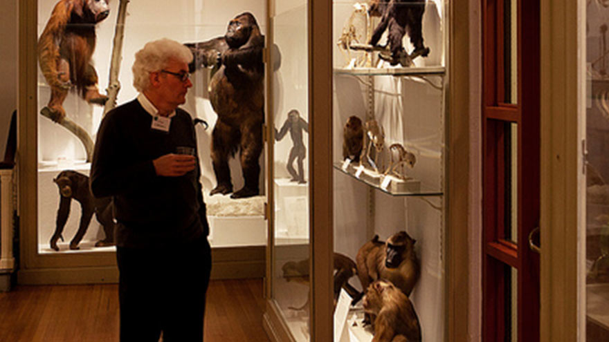 Harvard Museum Natural History Events
